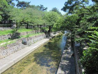 夙川公園 (800x600).jpg