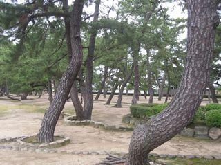 芦屋公園 (800x600).jpg