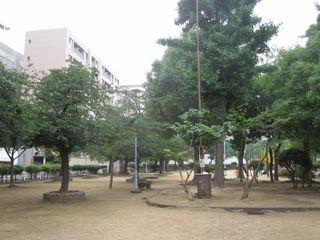 銅座公園 (800x600).jpg