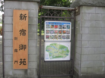 新宿御苑 新宿門 (800x600)