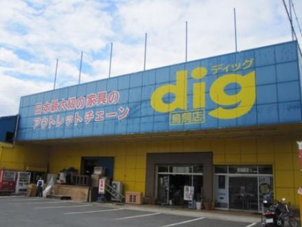 dig (480x360)