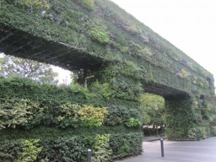 緑の壁 (480x360)