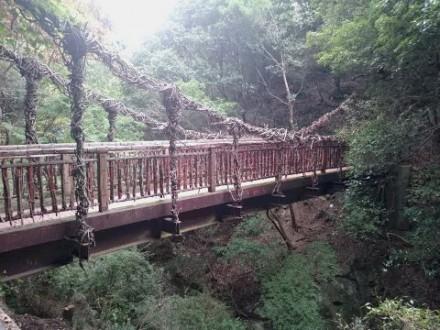 猿のかずら橋 (480x360)