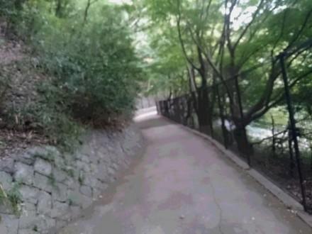 山道 (480x360)