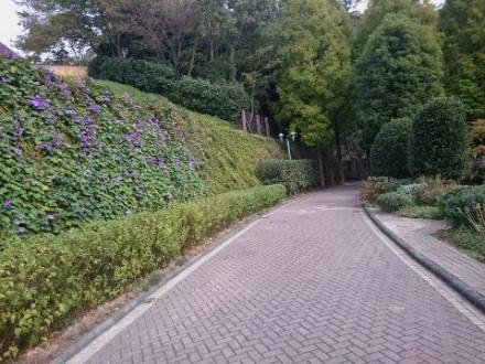 歩道 (480x360)