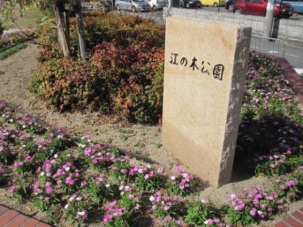 江の木公園 (480x360)