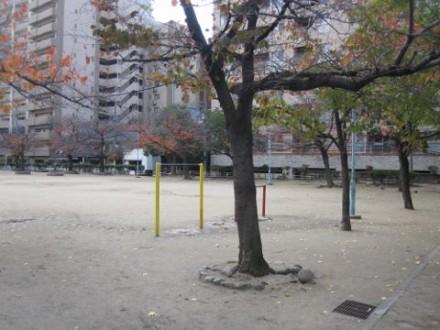 銅座公園 (480x360)