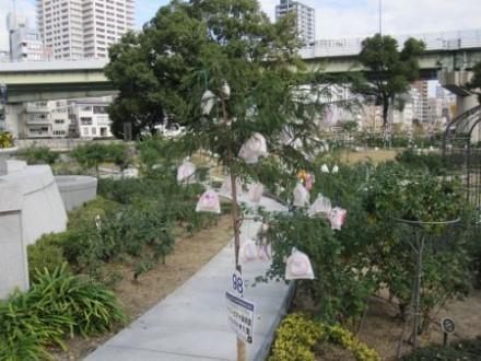 中之島公園 (450x338) (2)