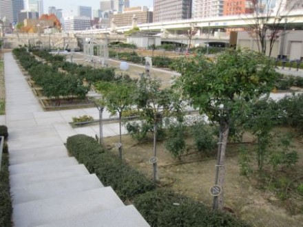 中之島公園 (450x338)