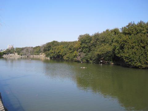 明石公園①