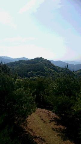 柏原山の眺望
