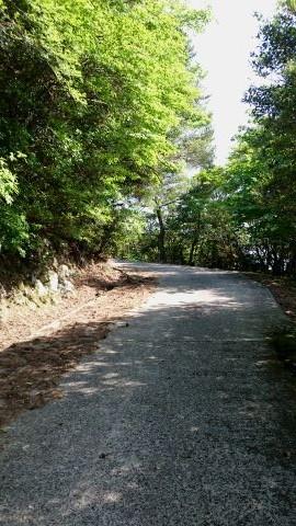 柏原山登山歩道