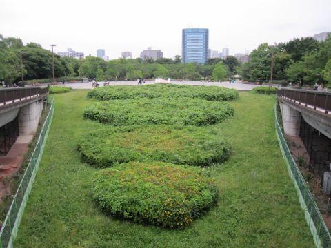 木場公園②