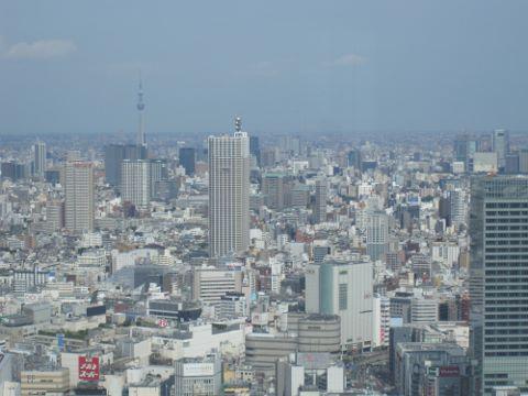都庁 (2) (480x360)